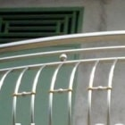 classic-stainless-steel-fences